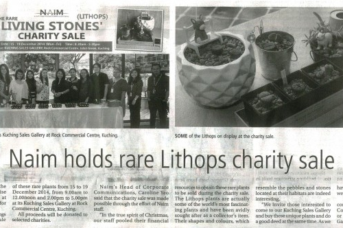 Naim holds rare Lithops charity sale