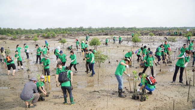 'Go Green Rocks!' Wetlands Conservation Programme